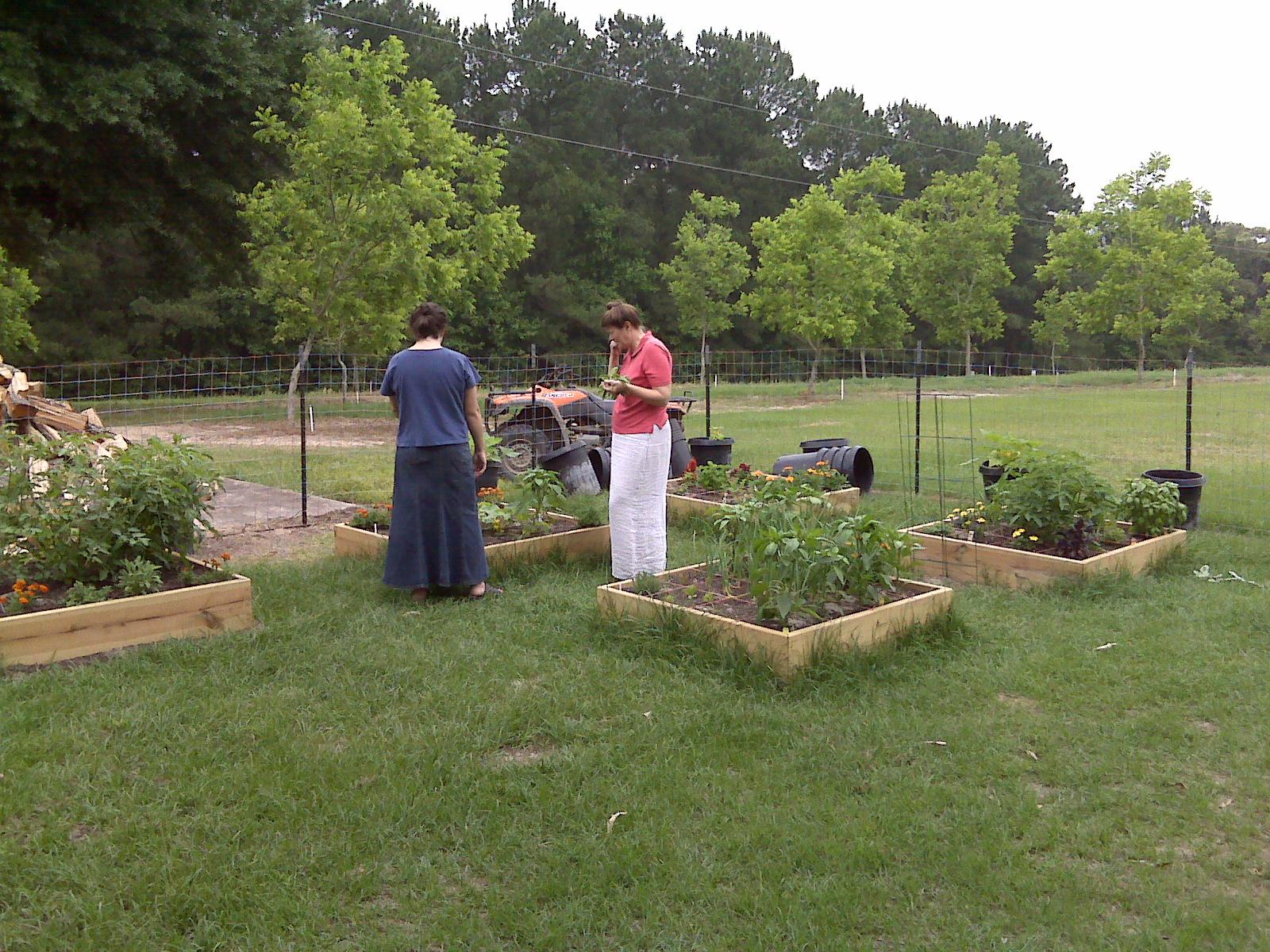 Kim and Kathy gardening