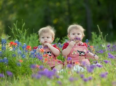Twins in flowers 2013 b