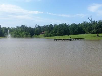 Flooded lake